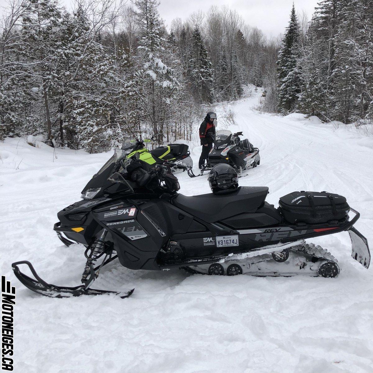Ski-Doo Renegade Adrenaline 900 ACE Turbo 2021